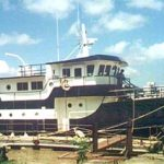 Diesel Duck Oceaneer 55 blue hull trim