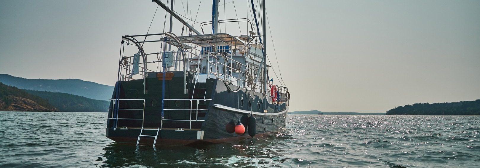 diesel duck 462 stern